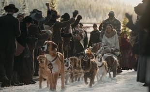L'Appel de la Forêt, adaptation du roman culte de Jack London, raconte l'histoire de Buck devenu chien de traîneau en Alaska.