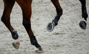 Une quinquagénaire dénonce des faits de viol dans le milieu de l'équitation qui auraient eu lieu dans les années 80, dans les Pyrénées-Atlantiques.