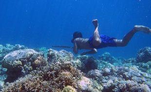 Des scientifiques ont découvert la première preuve d'une adaptation génétique de l'être humain à la plongée en profondeur, à savoir le développement exceptionnel de la rate du peuple Bajau en Indonésie.