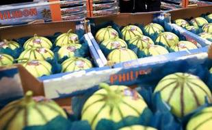 Des melons sur le marché de Rungis.
