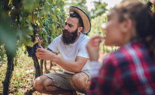 Pour ne laisser aucune zone d'ombre, les viticulteurs communiquent désormais sur leurs savoir-faire ainsi que sur leurs pratiques, de la culture du raisin jusqu'à la mise en bouteille.