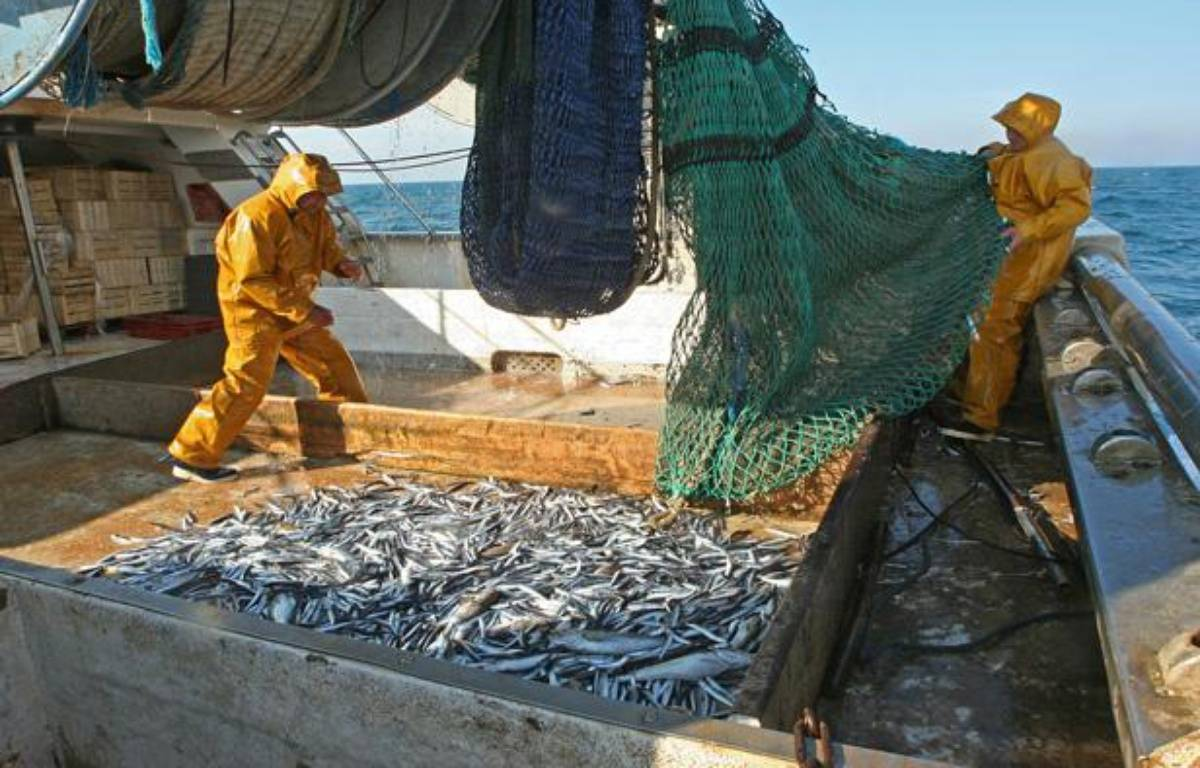 Peche au chalut en mer Mediterranee, dans le Golfe du Lion. – GOYHENEX JEAN-MARIE/SIPA