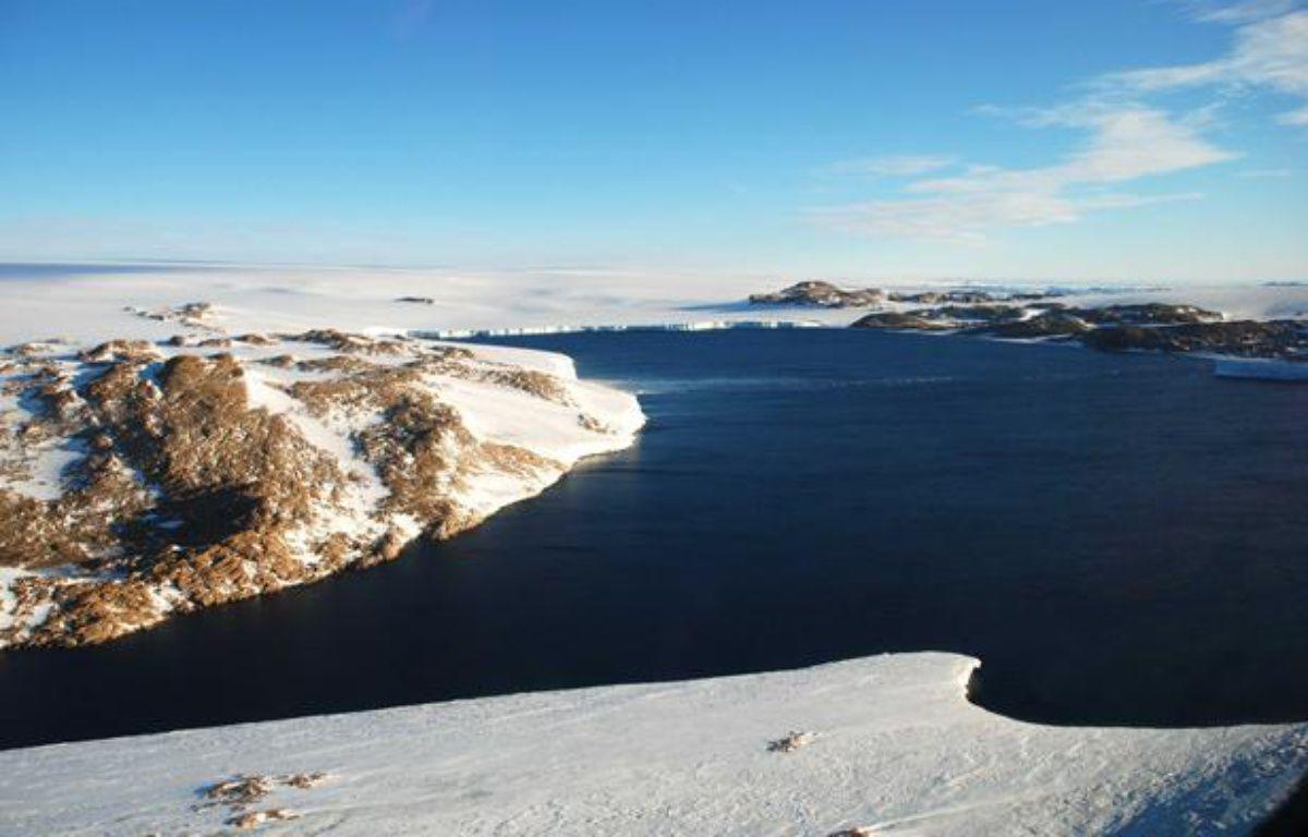 La baie des oiseaux en Antarctique, le 9 mars 2008. – CHINE NOUVELLE/SIPA