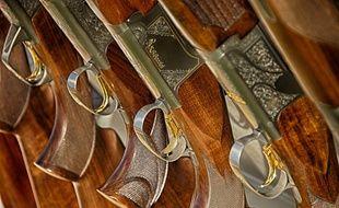 Illustration de fusils.