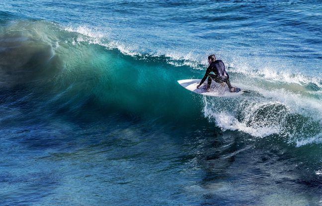 648x415 surfeur illustration