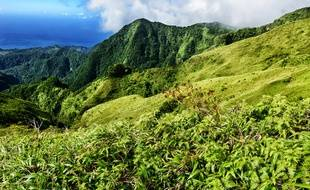 Voilà quelques idées d'escapades prouvant que « volcanique » peut rimer avec « idyllique ».