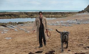 Yvan Attal dans «Mon chien Stupide»