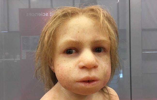 Une reproduction d'un enfant néandertalien, à découvrir à l'exposition Néandertal à Pierresvives.