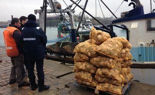 La pêche à la coquille est ouverte depuis début décembre sur le gisement de Saint-Malo.
