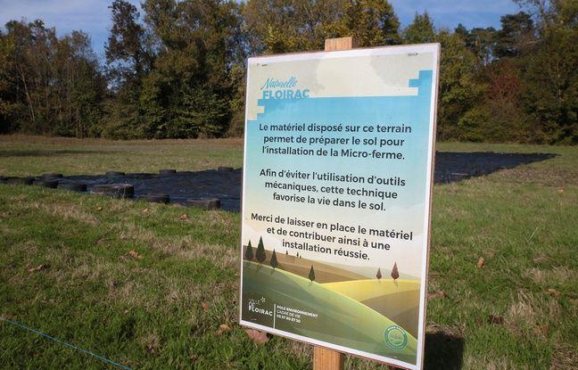 Le terrain sera investi par la maraîchère à partir du 1er décembre.