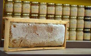 Faux étiquetage, trafic sur l'origine, ajouts de sirop de sucre: environ 10% du miel contrôlé et commercialisé en France est frauduleux, selon le Centre d'études techniques apicoles de Moselle (Cetam), seul laboratoire français indépendant de contrôle du miel.