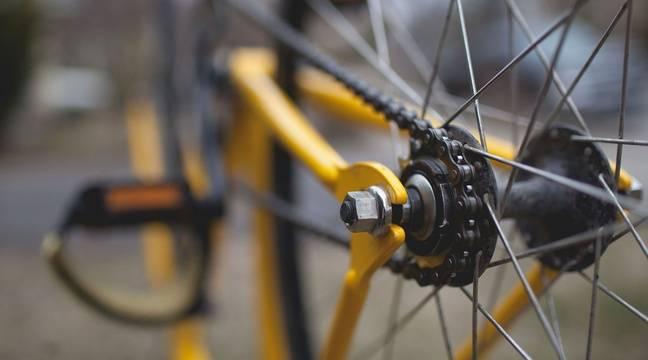 Une indienne de 15 ans transporte son père blessé à vélo sur 1.000 km