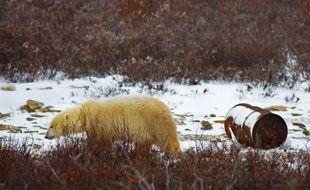 Des écologistes américains ont mis en garde mercredi contre les risques présentés par les forages pétroliers au large de l'Arctique, soulignant que les Etats-Unis sont très mal préparés pour faire face à une éventuelle marée noire dans cet environnement.
