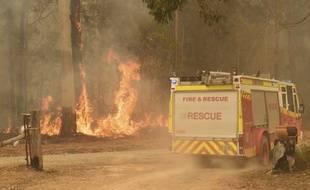 Des incendies ravagent les terres à 350 kilomètres de Sydney, le 15 novembre 2019.