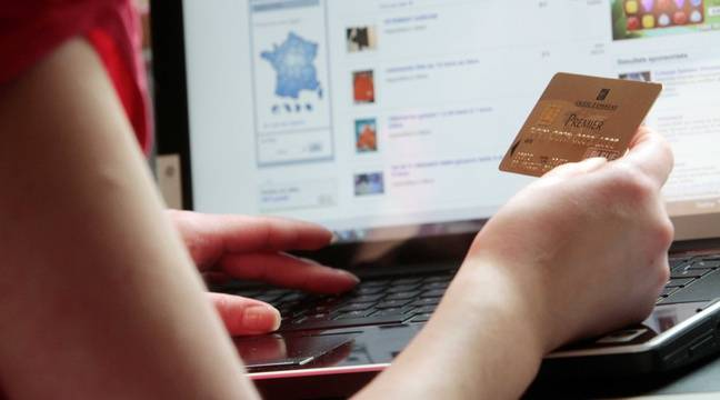 Ecommerce : Près d'un achat sur cinq s'est fait en ligne en 2020