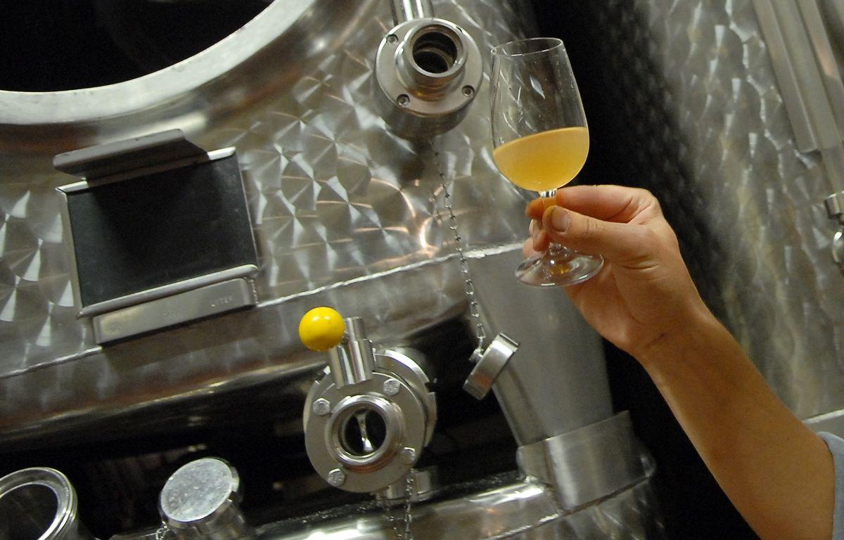 Illustration production vins d'Alsace. Le 25 09 06 – G . VARELA / 20 MINUTES