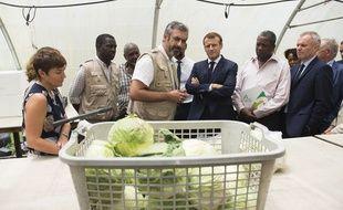 Emmanuel Macron devant de la contamination au Chlordécone