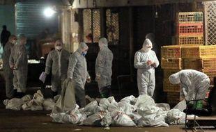 Après avoir fermé les marchés aux volailles et ordonné l'abattage de dizaines de milliers de volatils alors que le virus H7N9 a été retrouvé dans des pigeons, les autorités ont annoncé sur le site internet de la ville l'interdiction des courses de pigeons voyageurs et le confinement de deux millions d'entre eux.