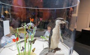 L'exposition Bébés animaux a ouvert au mois d'octobre