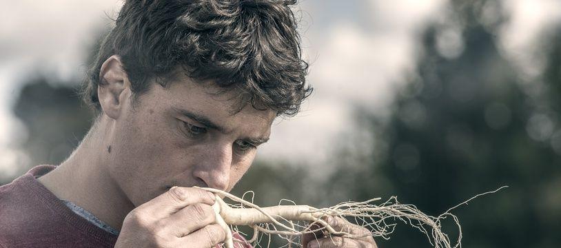 Yannick Jauzion dans un champs de ginseng.