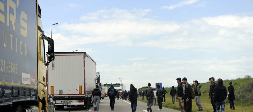 Illustration de migrants tentant de s'introduire dans les camions en direction de la Grande-Bretagne.