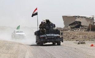 Les forces gouvernementales irakiennes font routes vers le village d'al-Azraqiyah, près de Falloujah, aux mains des djihadistes de l'EI