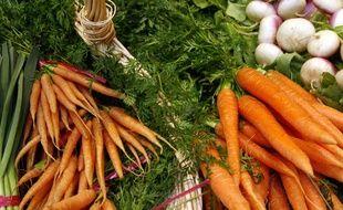 Des bottes de carottes.