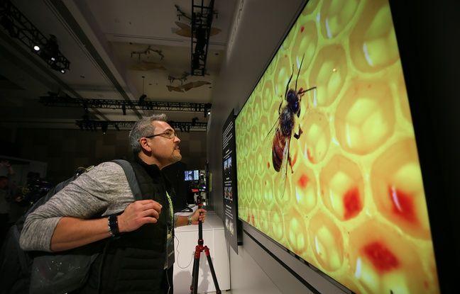 Les téléviseurs Micro-LED veulent concurrencer l'OLED.