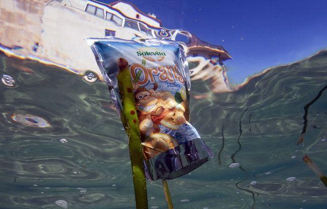 Marseille: Les kayakistes ont ramassé 1,2 tonne de déchets lors d'une course inédite