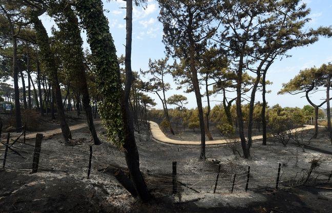 Incendie d'Anglet: Dégâts, origine, prévisions,... Où en est l'enquête?