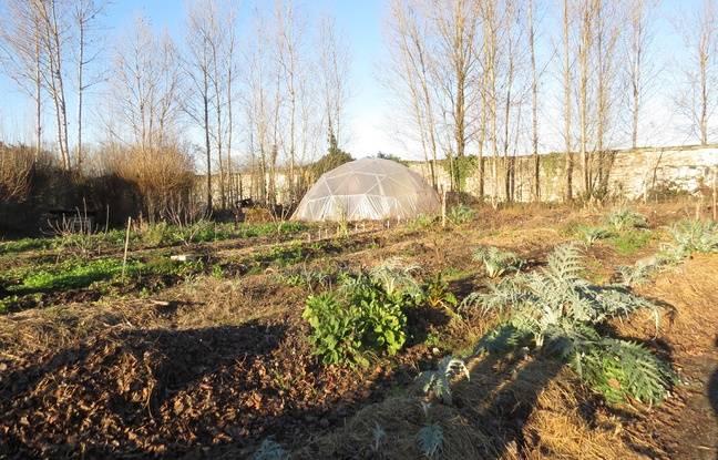 Un jardin a été développé en permaculture et donne de bons résultats.