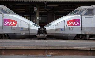 L'année 2014 devrait être une année difficile pour la SNCF, avec notamment une poursuite de la baisse de rentabilité de sa principale activité, le TGV, et le transporteur devrait supprimer 1.432 postes l'an prochain, par le non-remplacement de départs en retraite, affirme dimanche le journal Les Echos.