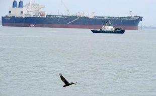 Un pélican passe devant un pétrolier, le 27 mai 2010 à la baie San Pedro, au large de Los Angeles et Long Beach, en Californie