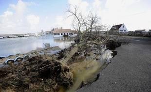 Les Moutiers, en Loire-Atlantique, après le passage de la tempête Xynthia le 28 février 2010.
