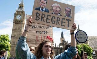 Des anti-Brexit manifestent au Royaume-Uni le 2 juillet 2016