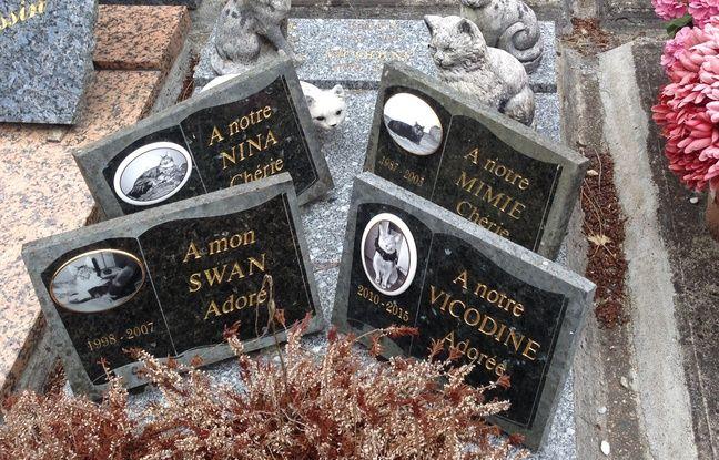 Comme sur les tombes pour humains, on retrouve la date de naissance et de décès de l'animal.
