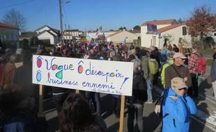 Manifestation contre le projet de surf park à Saint-Père-en-Retz, le 24 février 2019