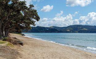 Une plage déserte de Nouvelle-Zélande le 5 mars 2021 après une alerte au tsunami déclenchée dans toute la région Pacifique.