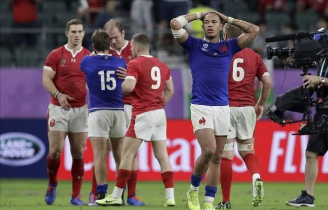Coupe du monde de rugby: «Le match le plus complet»... Cette fois, la défaite est vraiment (encou)rageante pour le XV de France