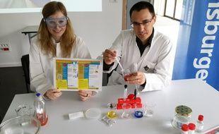 L'école de Mulhouse et Ravensburger s'associent pour créer un jeu de chimie pour enfants.