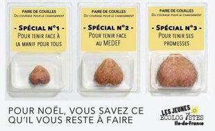 Dans leur dernière campagne de communication, les Jeunes écologistes d'Ile-de-France voulaient d'offrir «une paire de couilles» à François Hollande