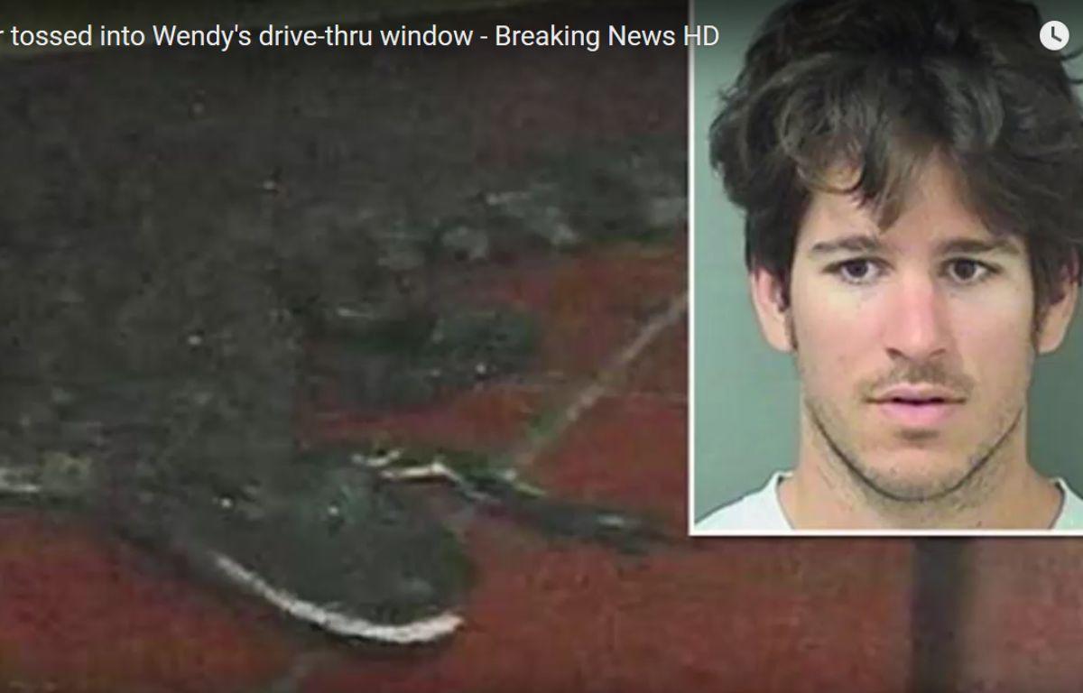 Le jeune homme a été arrêté pour avoir jeté un alligator dans un fast-food, déclenchant une panique générale dans l'établissement. – WPTV