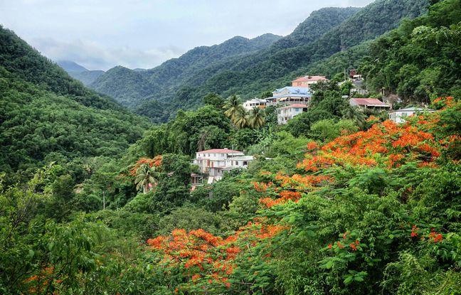 Sur Basse-Terre, les hauteurs luxuriantes échappent aux foules de la côte.