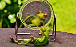 Illustration d'un grenouille qui se regarde dans un miroir. Dans l'anorexie, les patientes sont dans le déni et ne voient pas leur corps tel qu'il est.