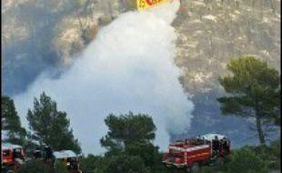 """L'incendie qui a détruit 300 hectares de pinède et de garrigue vendredi dans le Var et les Bouches-du-Rhône était """"sous contrôle"""" samedi matin."""