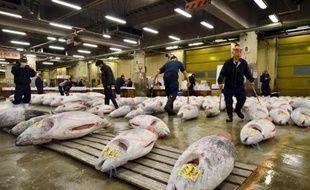 Comme les Halles de Paris il y a une quarantaine d'années, le marché aux poissons Tsukiji de Tokyo, le plus grand du monde, va bientôt quitter le coeur de la capitale pour des locaux plus fonctionnels mais sans doute moins pittoresques