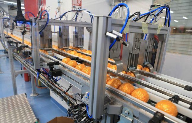 Sur la nouvelle ligne de production à l'usine Carambar & Co à Strasbourg. Boule chocolat orange Terry's. Le 19 novembre 2018