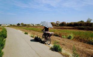 Une cycliste bien équipée sur la voie verte qui mène Montpellier à la plage.