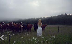 La jolie Jonna Jinton et des vaches très jolies également