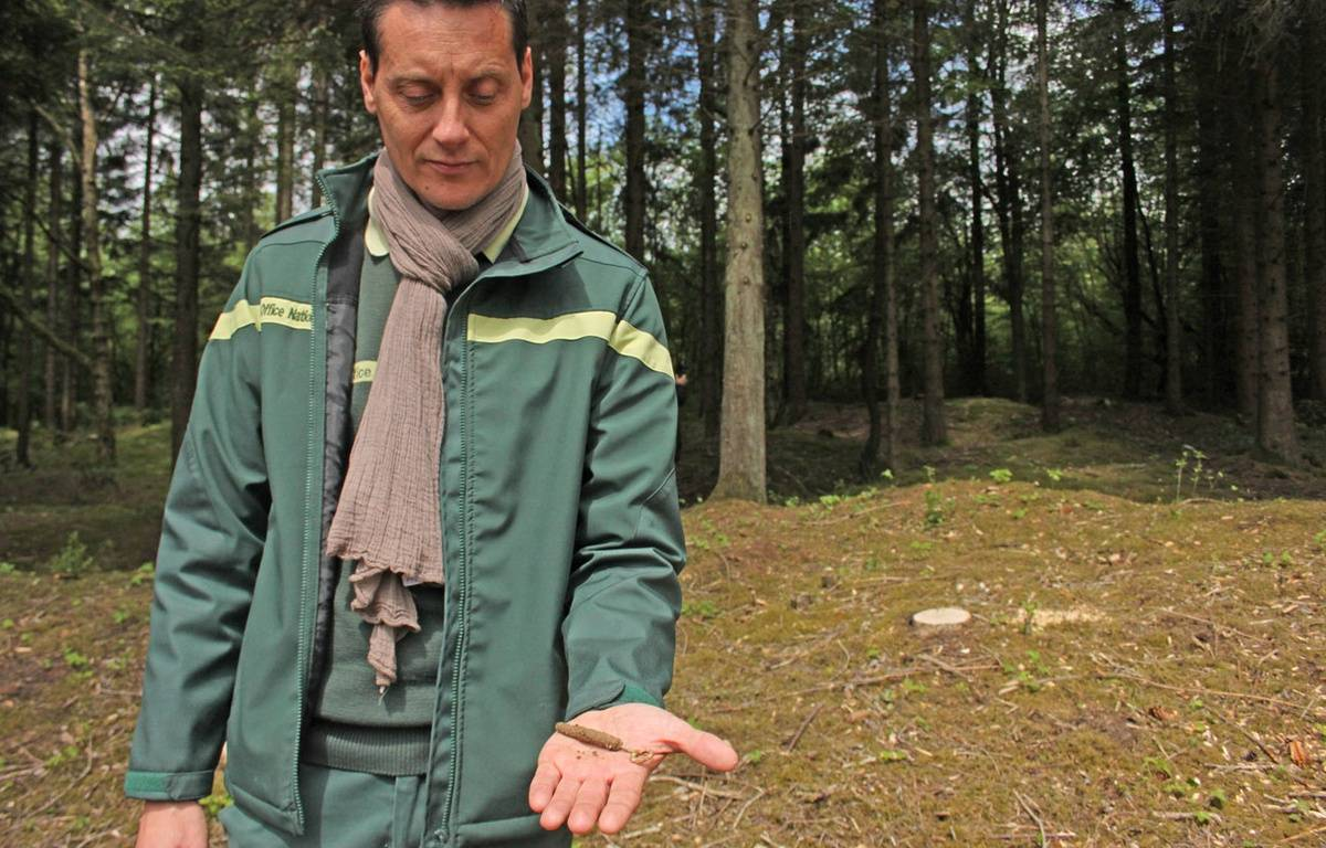Guillaume Rouard, technicien forestier, montre le couvercle d'une boîte de sardines datant de la Première guerre mondiale, retrouvée en forêt de Verdun le 17 mai 2016. – A.Chauvet/20Minutes